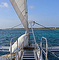Out For A Sail by Carolyn Stagger Cokley