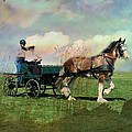 Out For A Trot by Shirley Sirois