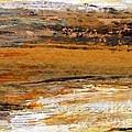 Out In The Fields by Nancy Kane Chapman