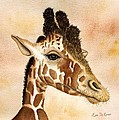Out Of Africa's Giraffe by Lyn DeLano
