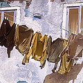 Out To Dry by Peter Scholey