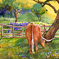 Out To Pasture by Sue Kemp