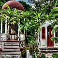 Outdoor Chapel In Gustavia  by Heidi Piccerelli