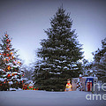 Outdoor Christmas Tree by Thomas Woolworth