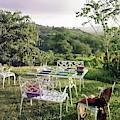 Outdoor Furniture By Lloyd On Grassy Hillside by Tom Leonard