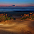 Outer Banks - Before Sunrise On Pea Island I by Dan Carmichael