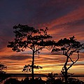 Outer Banks Sunset by Richard Rosenshein