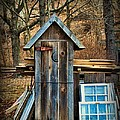 Outhouse - 5 by Paul Ward