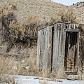 Outhouse With Horseshoe by Sue Smith