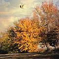 Over The Golden Tree by Jai Johnson