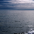 Over The Ocean by Margie Hurwich
