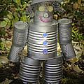 Over The Rainbow Garden Tin Man by LeeAnn McLaneGoetz McLaneGoetzStudioLLCcom
