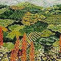 Overgrown by Allan P Friedlander