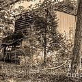Overgrown Barn by Aaron  Shortt