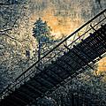 Overhead Bridge by John Cardamone
