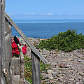 Overlooking Bay Of Fundy by Cheryl Aguiar