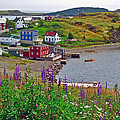 Overlooking Trinity-nl by Ruth Hager