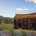 Owens Valley Shack by Priya Ghose