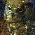 Owl by Dee Flouton
