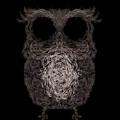 Owl Poster. Vector Illustration by Darcraft
