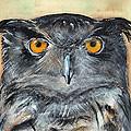 Owl Series - Owl 1 by Judith Rice