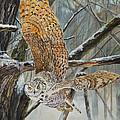 Owl Taking Off by Alvin Hepler