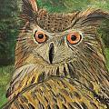 Owl With Orange Eyes by Helene Thomason