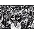 Owls Eyes by Adria Trail