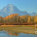 Oxbow Bend by Kathleen Struckle