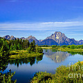 Oxbow Bend by Robert Bales