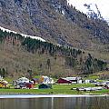 Oye Norway by Katerina Naumenko