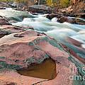 Ozark Stream by Steve Stuller