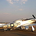 P-51 Mustang Fighter Aircraft by Amy McDaniel