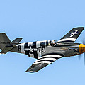 P-51 Mustang Fighter by Puget  Exposure