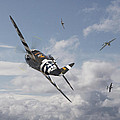 P47- Fw190 - Carousel by Pat Speirs