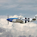 P51 Mustang Gallery - No2 by Pat Speirs