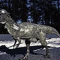 Pachycephalosaurus by Ramon Martinez
