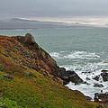 Pacific Coast Colors by Susan Wyman