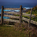 Pacific Coast Fence by Garry Gay