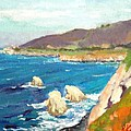Pacific Coast by Raymond Kaler