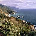 Pacific Coastline At Big Sur by George Oze