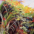 Pacific Crocosmia by Melody Cleary