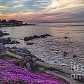 Sunset In Pacific Grove by Charlene Mitchell