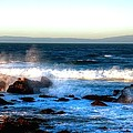 Pacific Grove Surf 19894 by Jerry Sodorff