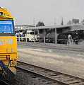 Pacific National 9303 02 by Kevin Chippindall