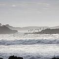 Pacific Ocean by Gunay Turgut