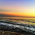 Pacific Palisades California  by Artemisa