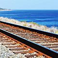 Pacific Surfliner Tracks Along The Central Coast by Kyle Hanson