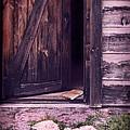 Package By Open Front Door by Jill Battaglia