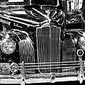 Packard Motor Car by Mara Lee